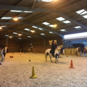 The new arena in use by Cranleigh RDA members